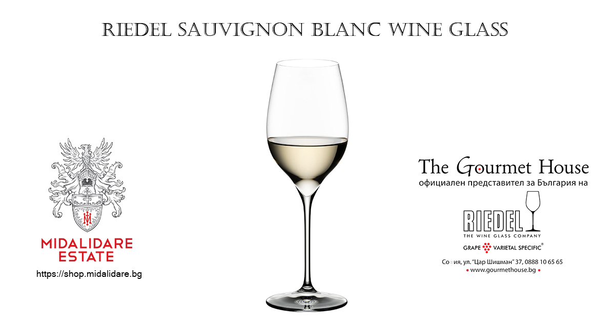 Sauvignon Blanc Wine Glass
